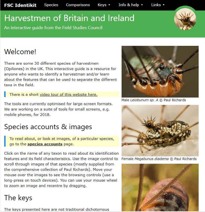 FSC Identikit harvestman ID resource
